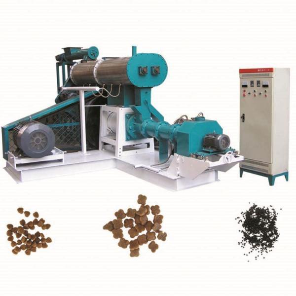 60-80kg/H Fish Feed Making Machine Mini Fish Feed Pellet Extruder